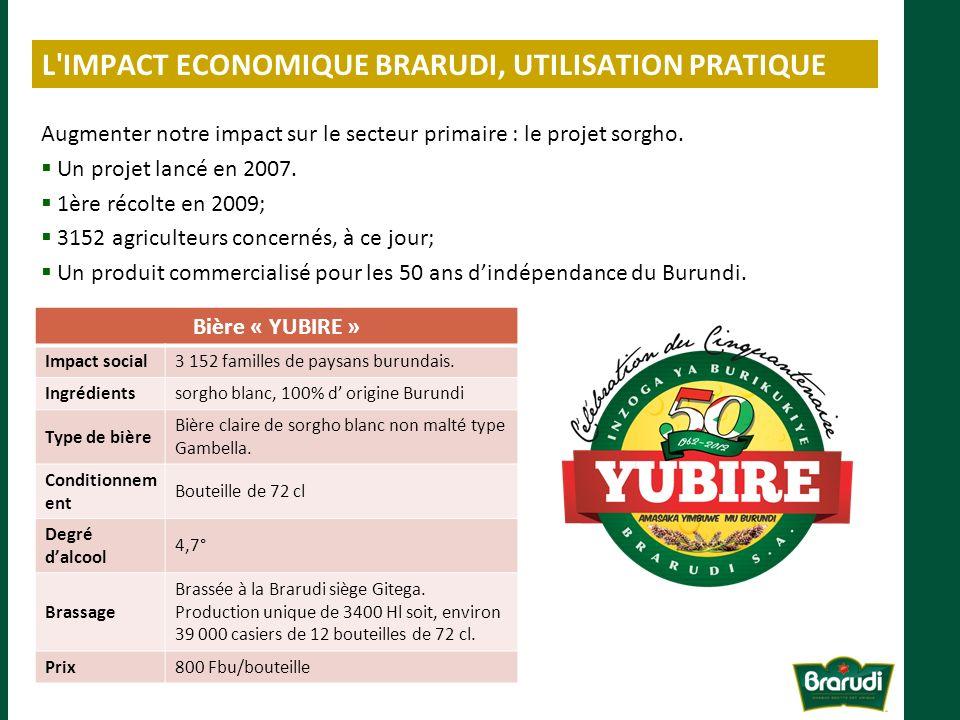 L IMPACT ECONOMIQUE BRARUDI, UTILISATION PRATIQUE