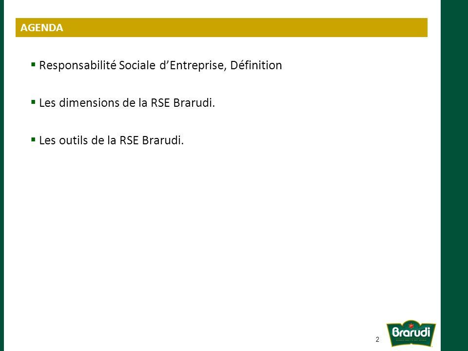Responsabilité Sociale d'Entreprise, Définition