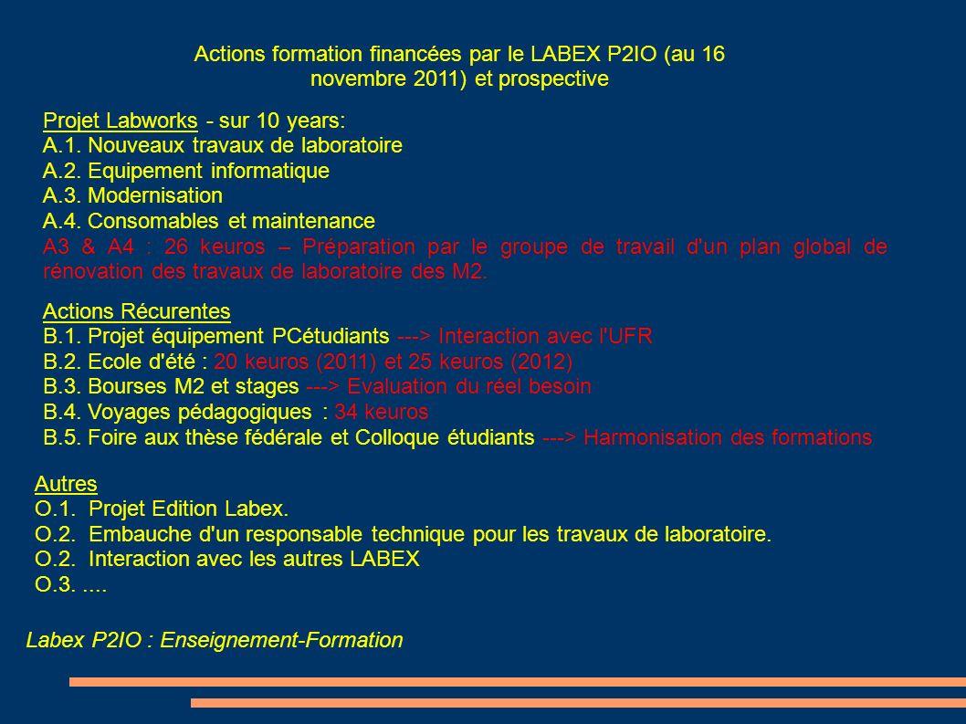 Actions formation financées par le LABEX P2IO (au 16 novembre 2011) et prospective