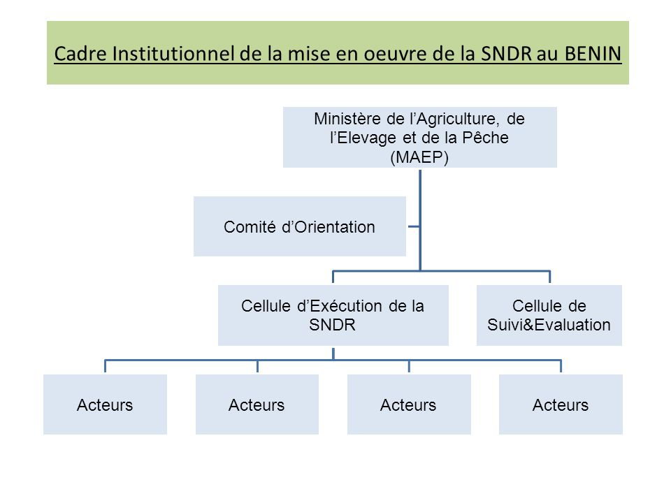 Cadre Institutionnel de la mise en oeuvre de la SNDR au BENIN