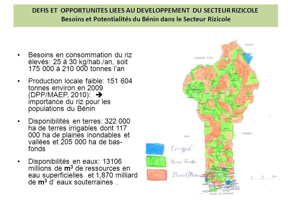 DEFIS ET OPPORTUNITES LIEES AU DEVELOPPEMENT DU SECTEUR RIZICOLE Besoins et Potentialités du Bénin dans le Secteur Rizicole
