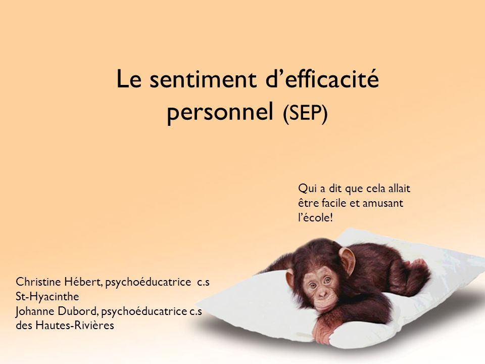Le sentiment d'efficacité personnel (SEP)