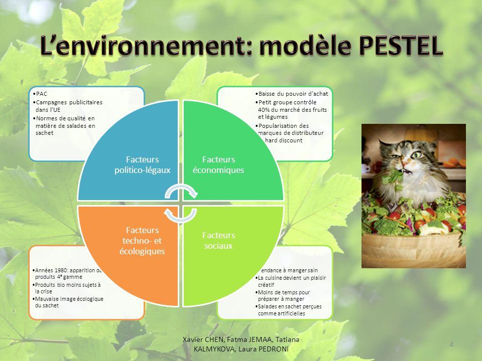 L'environnement: modèle PESTEL