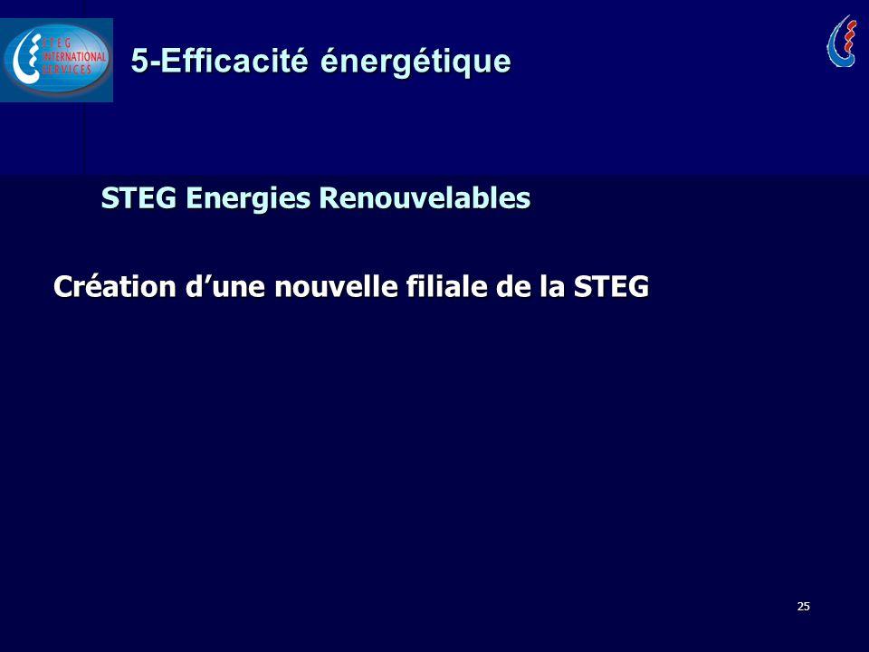STEG Energies Renouvelables