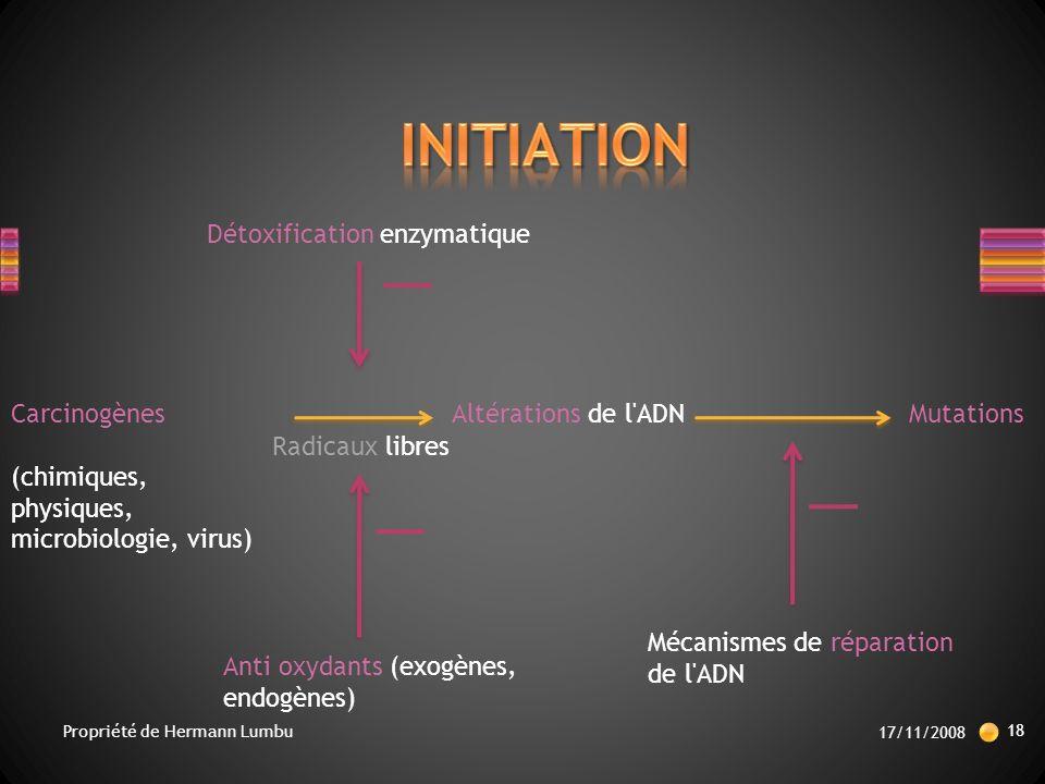 INITIATION Détoxification enzymatique Carcinogènes
