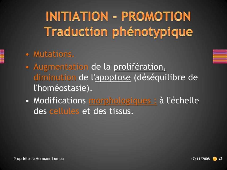 INITIATION – PROMOTION Traduction phénotypique