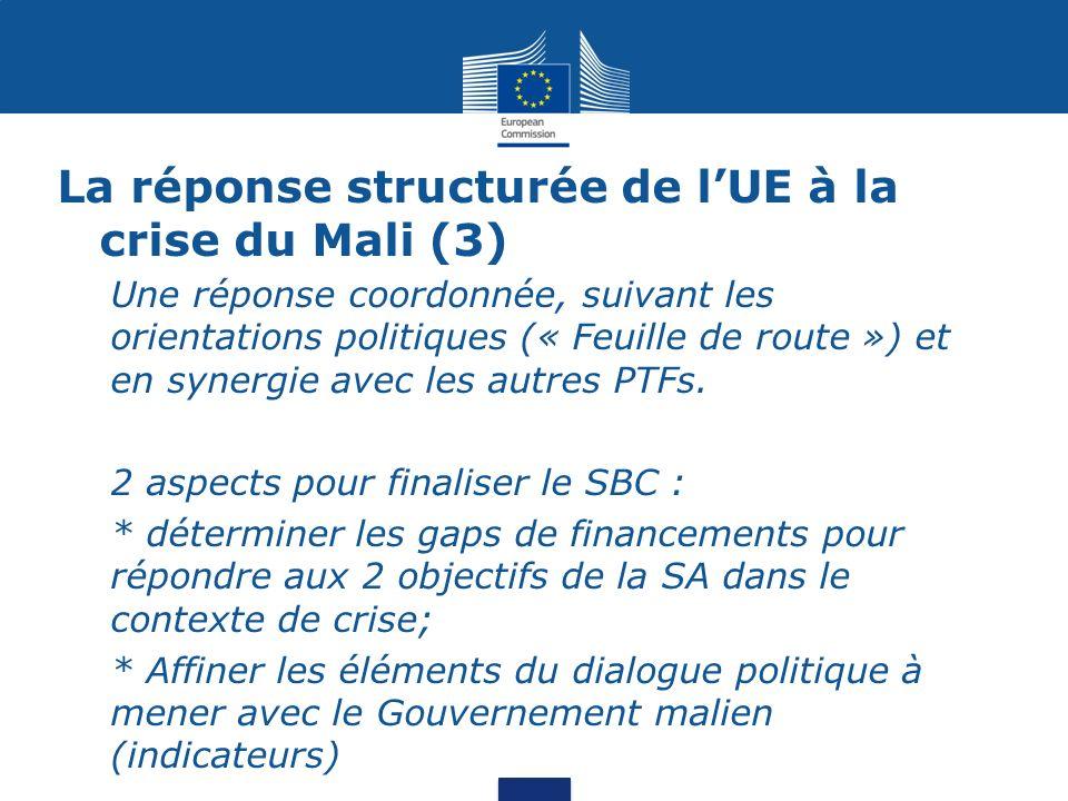 La réponse structurée de l'UE à la crise du Mali (3)