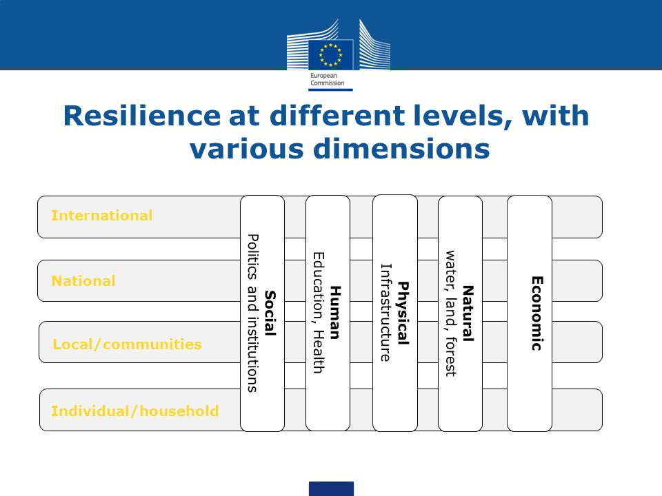 Resilience at different levels, with various dimensions