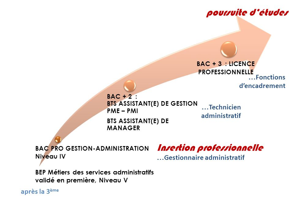 BAC + 3 : LICENCE PROFESSIONNELLE