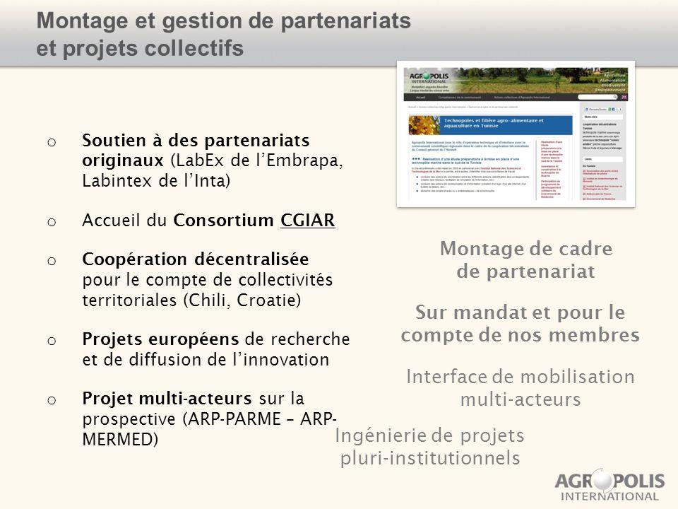 Montage et gestion de partenariats et projets collectifs