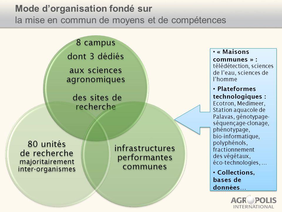 Mode d'organisation fondé sur la mise en commun de moyens et de compétences