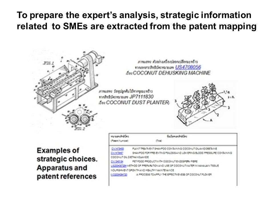To prepare the expert's analysis, strategic information