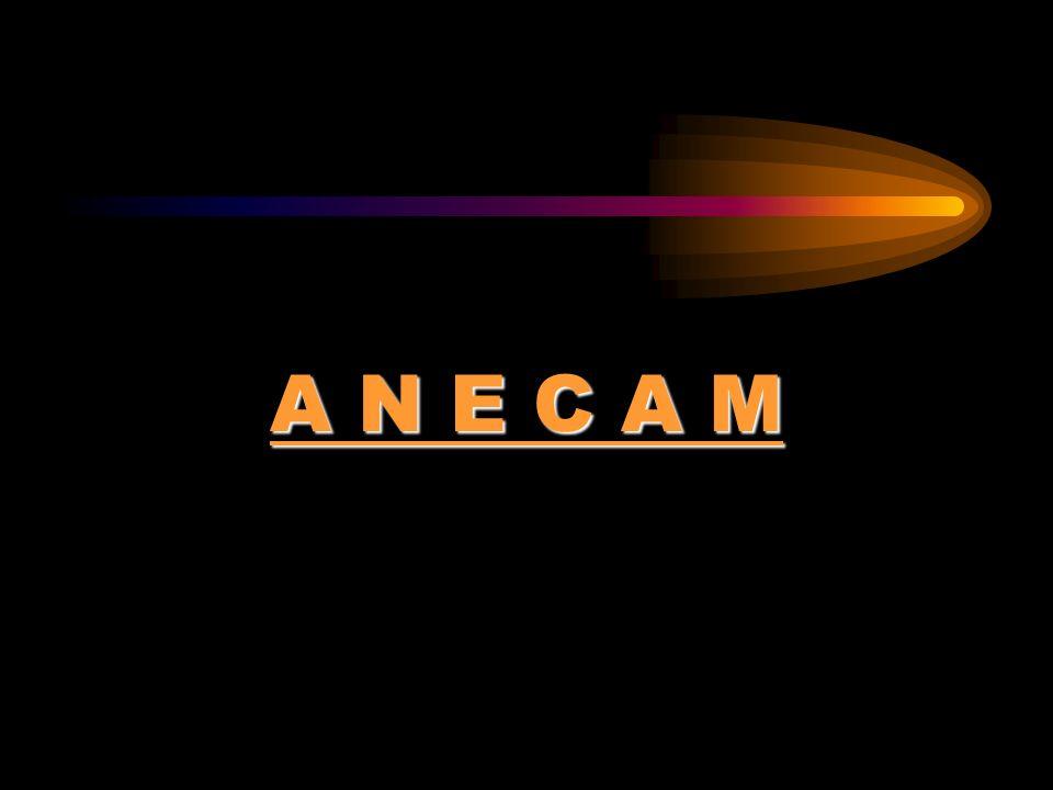 A N E C A M