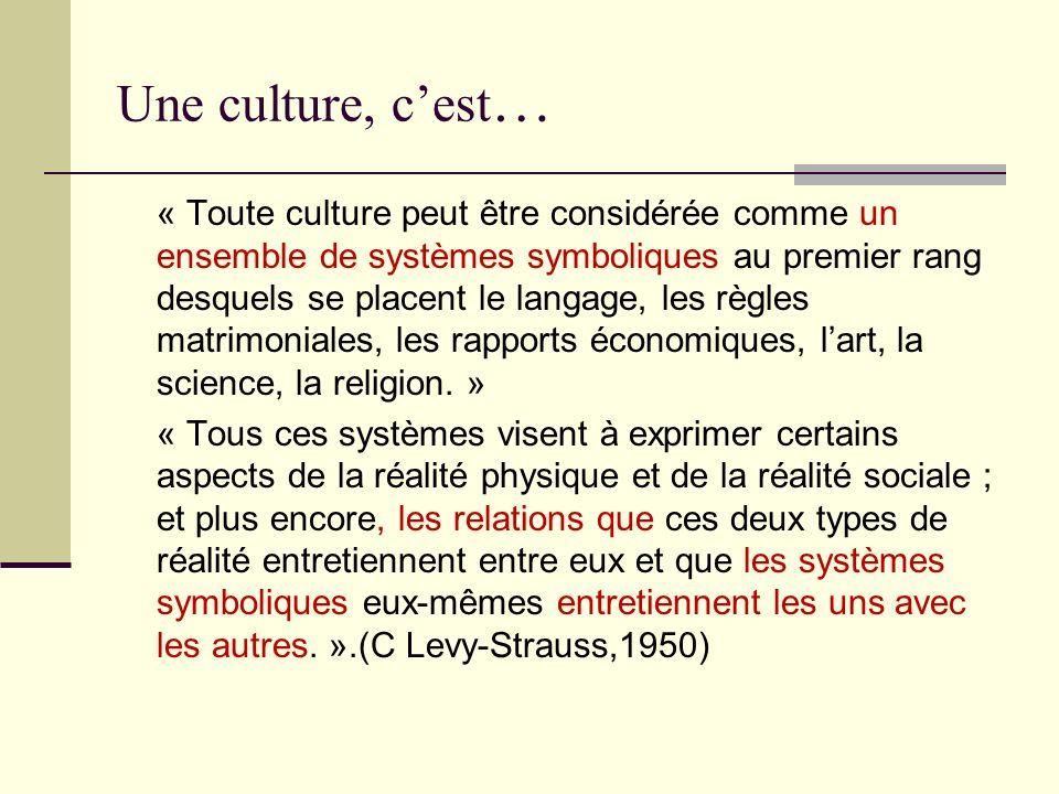 Une culture, c'est…