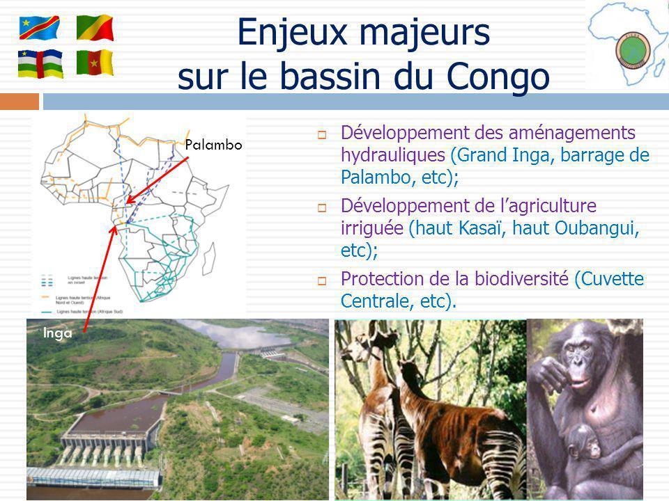 Enjeux majeurs sur le bassin du Congo