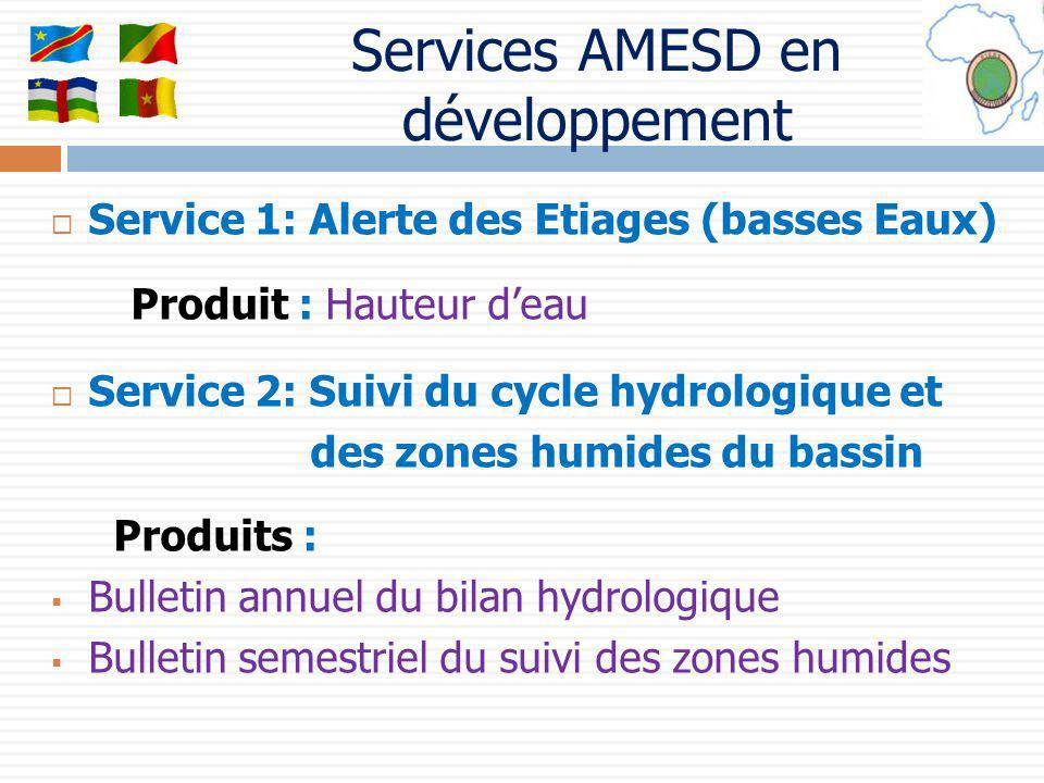 Services AMESD en développement