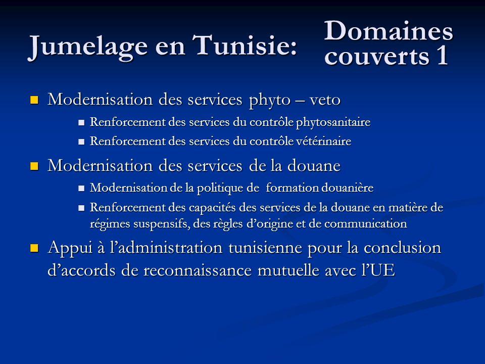 Jumelage en Tunisie: Domaines couverts 1