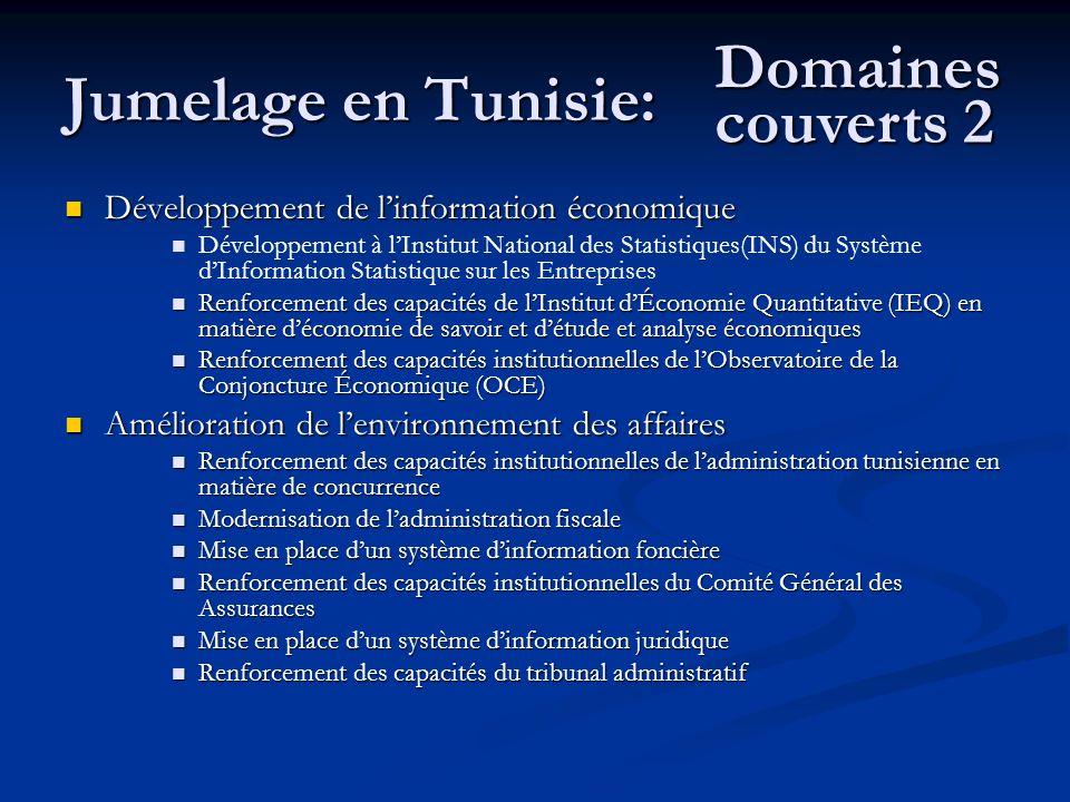 Jumelage en Tunisie: Domaines couverts 2