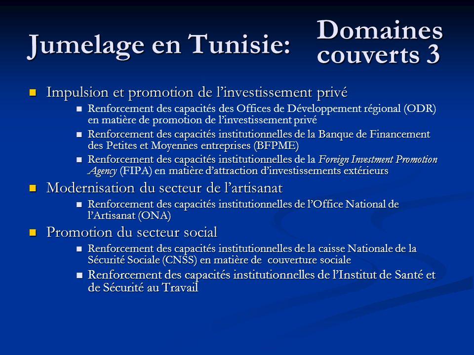Jumelage en Tunisie: Domaines couverts 3