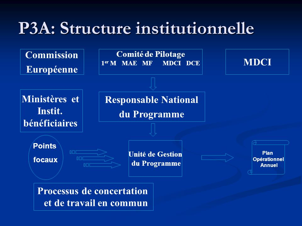 P3A: Structure institutionnelle