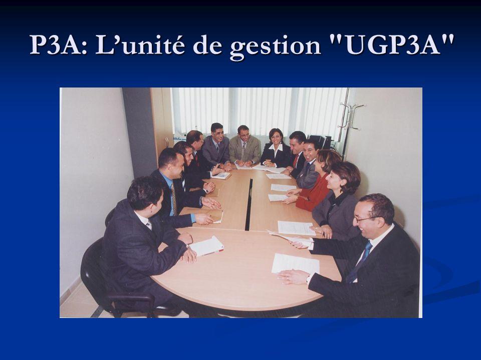 P3A: L'unité de gestion UGP3A