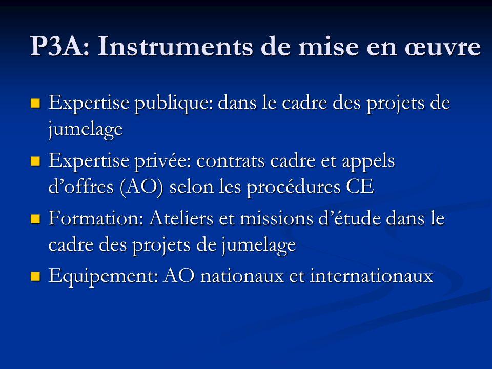 P3A: Instruments de mise en œuvre
