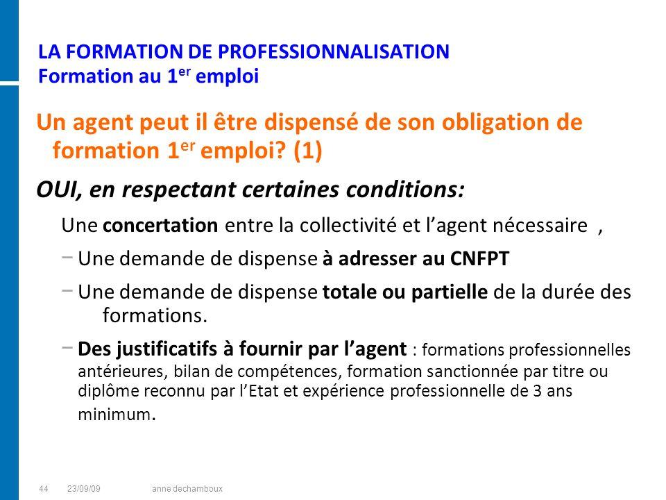 LA FORMATION DE PROFESSIONNALISATION Formation au 1er emploi
