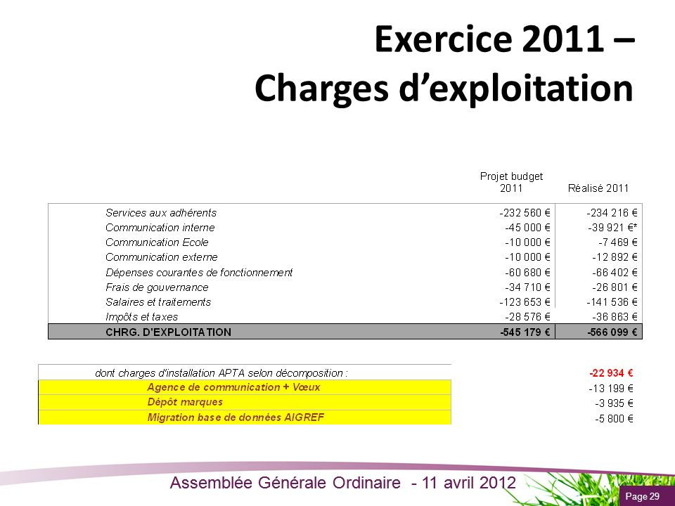 Exercice 2011 – Charges d'exploitation