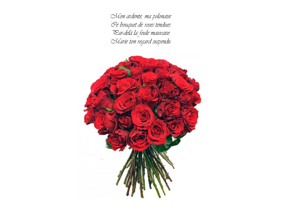 Mon ardente, ma polonaise Ce bouquet de roses tendues