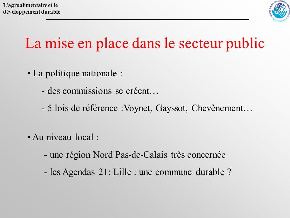 La mise en place dans le secteur public
