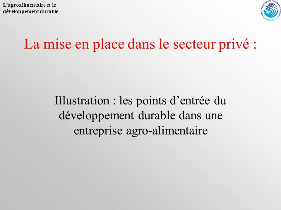 La mise en place dans le secteur privé :