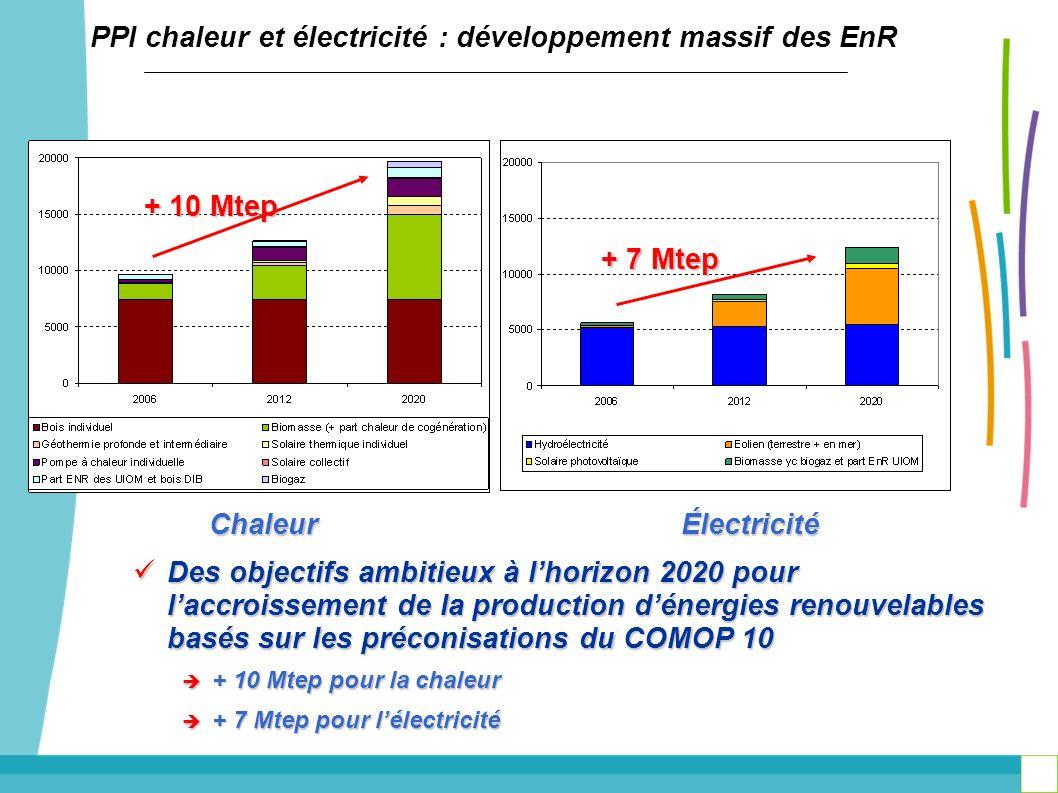 PPI chaleur et électricité : développement massif des EnR