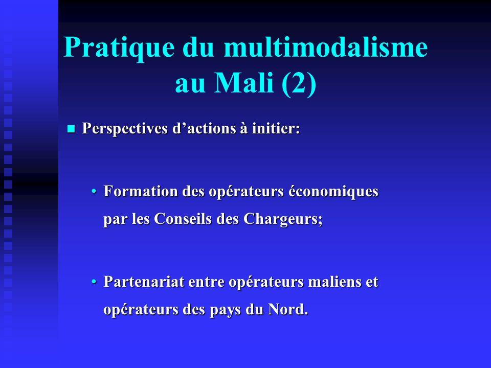 Pratique du multimodalisme au Mali (2)