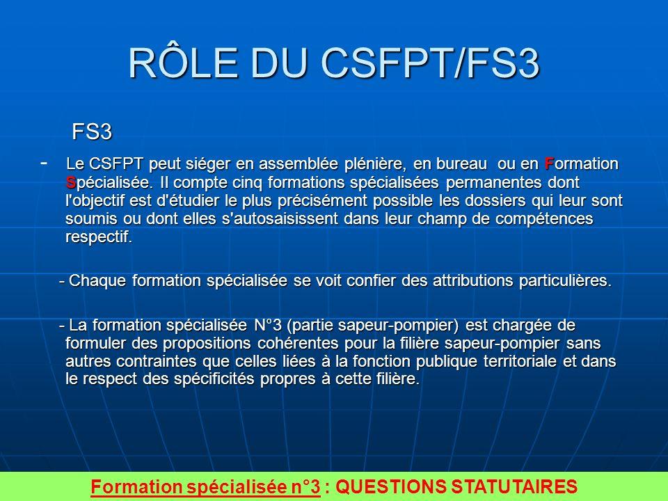 Formation spécialisée n°3 : QUESTIONS STATUTAIRES