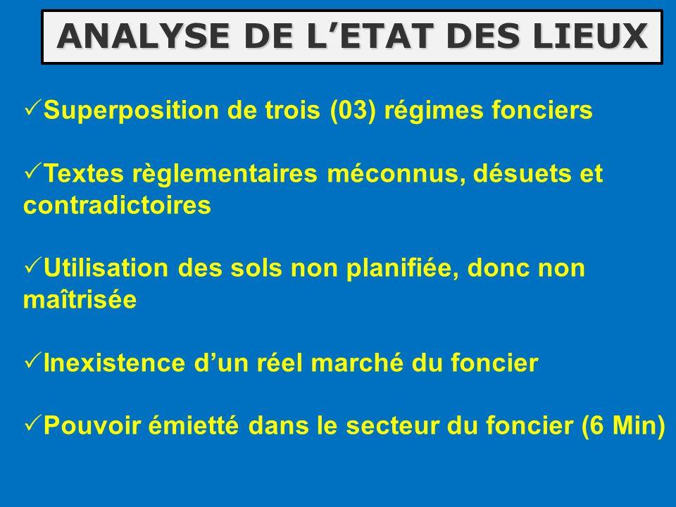 ANALYSE DE L'ETAT DES LIEUX