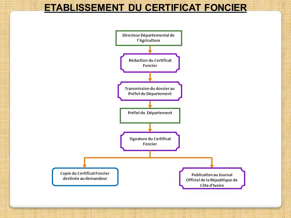 ETABLISSEMENT DU CERTIFICAT FONCIER