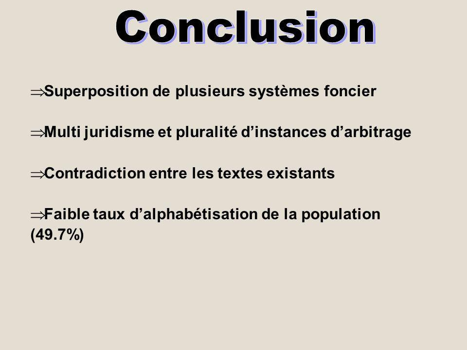 Conclusion Superposition de plusieurs systèmes foncier