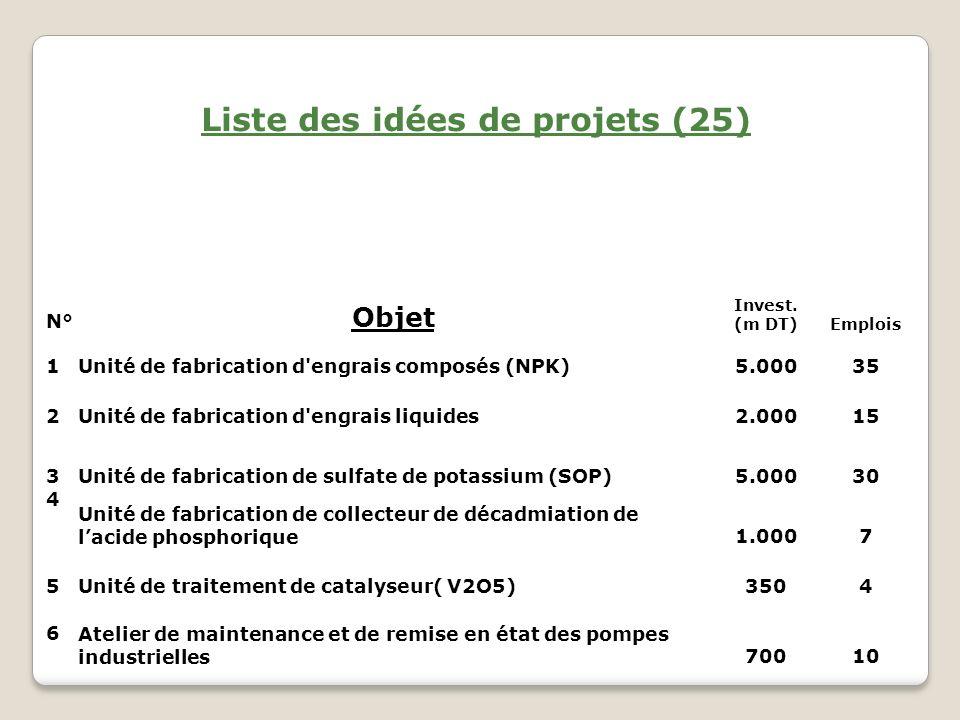 Liste des idées de projets (25)