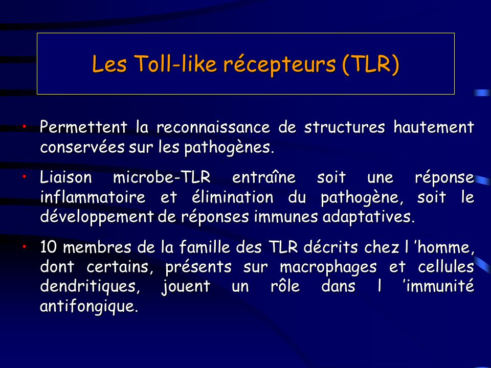 Les Toll-like récepteurs (TLR)