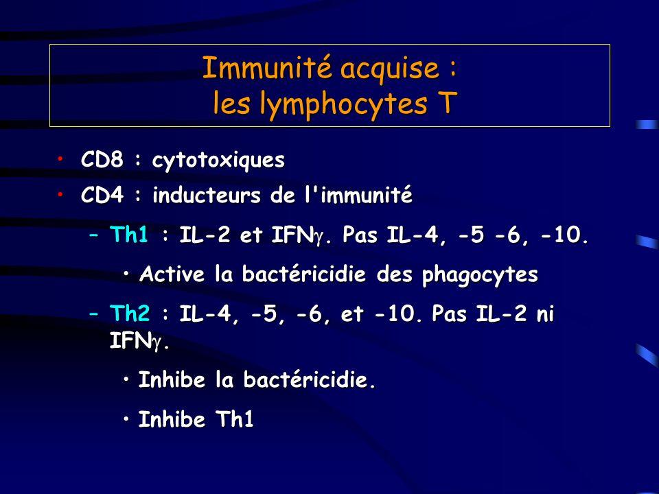 Immunité acquise : les lymphocytes T