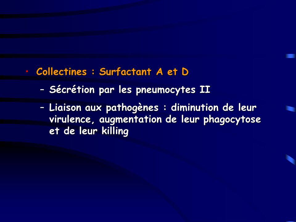 Collectines : Surfactant A et D