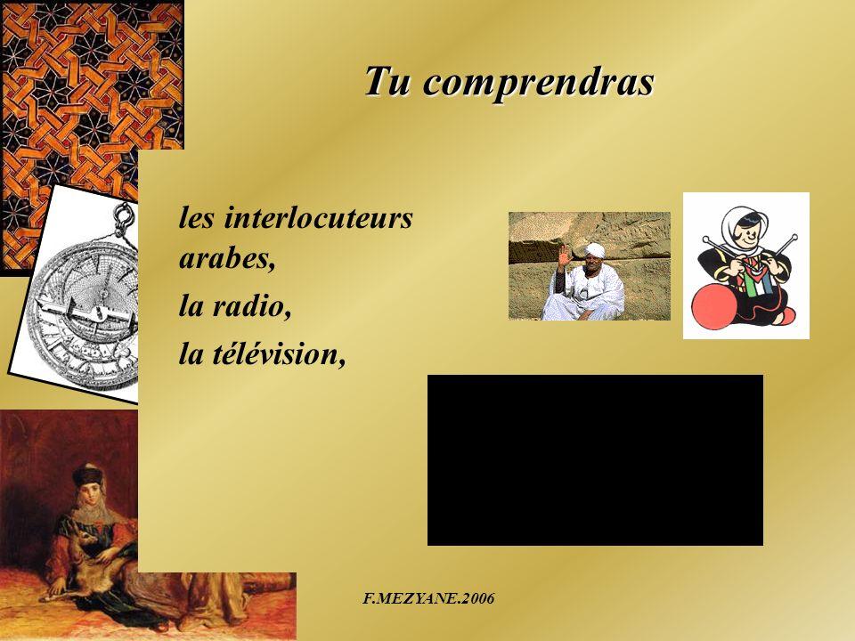 Tu comprendras les interlocuteurs arabes, la radio, la télévision,