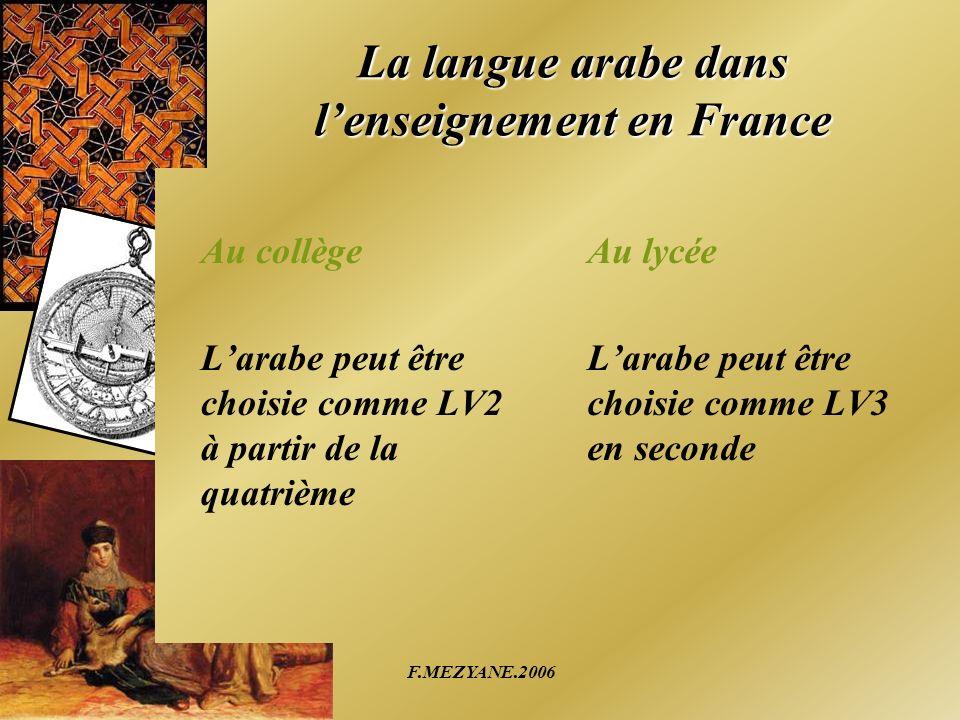 La langue arabe dans l'enseignement en France