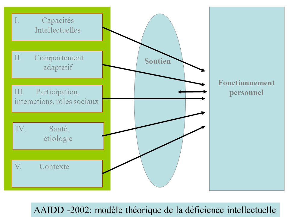 AAIDD -2002: modèle théorique de la déficience intellectuelle