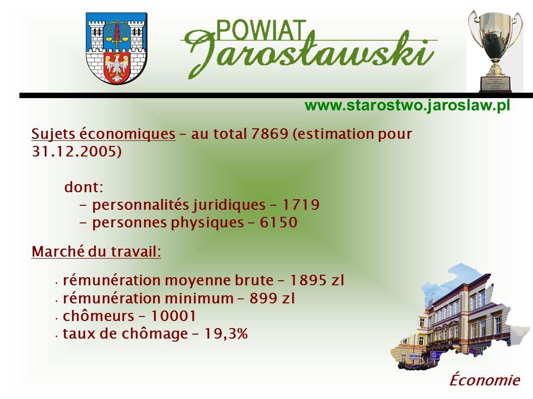 Sujets économiques – au total 7869 (estimation pour 31.12.2005)