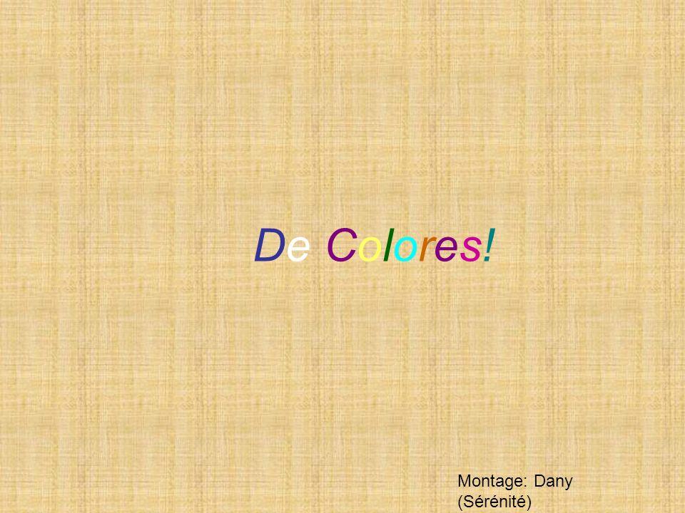 De Colores! Montage: Dany (Sérénité)