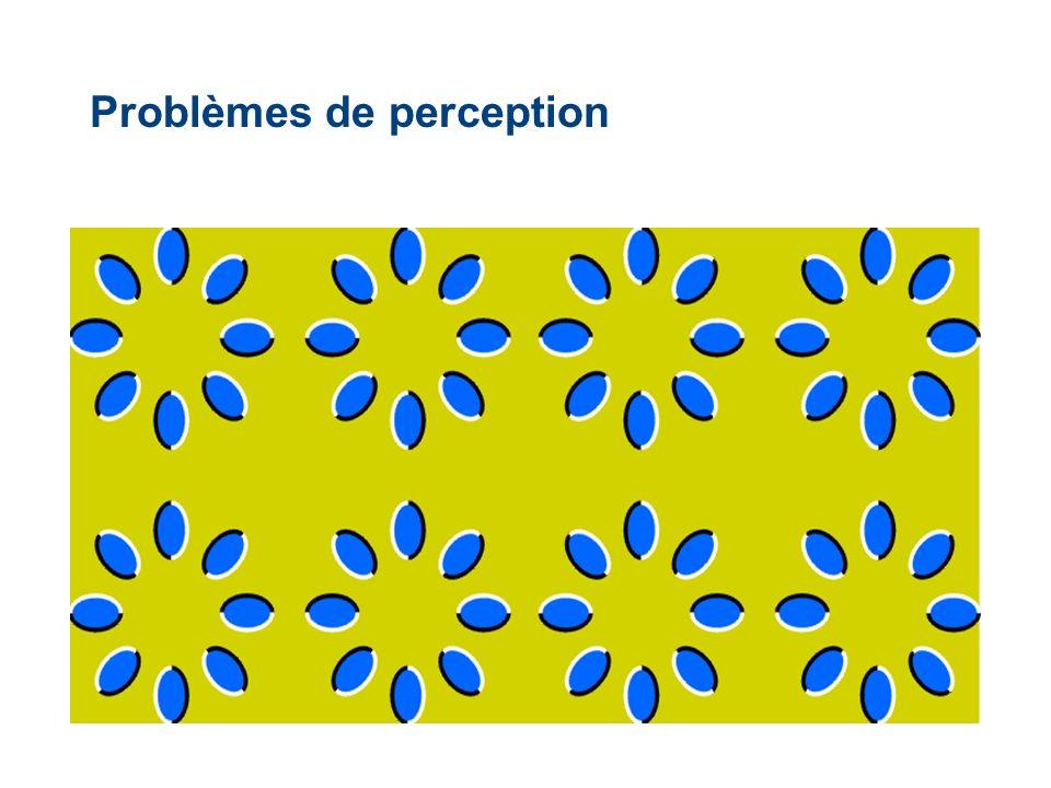 Problèmes de perception
