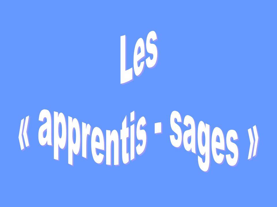 Les « apprentis - sages »
