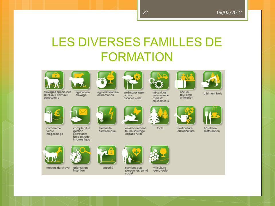LES DIVERSES FAMILLES DE FORMATION