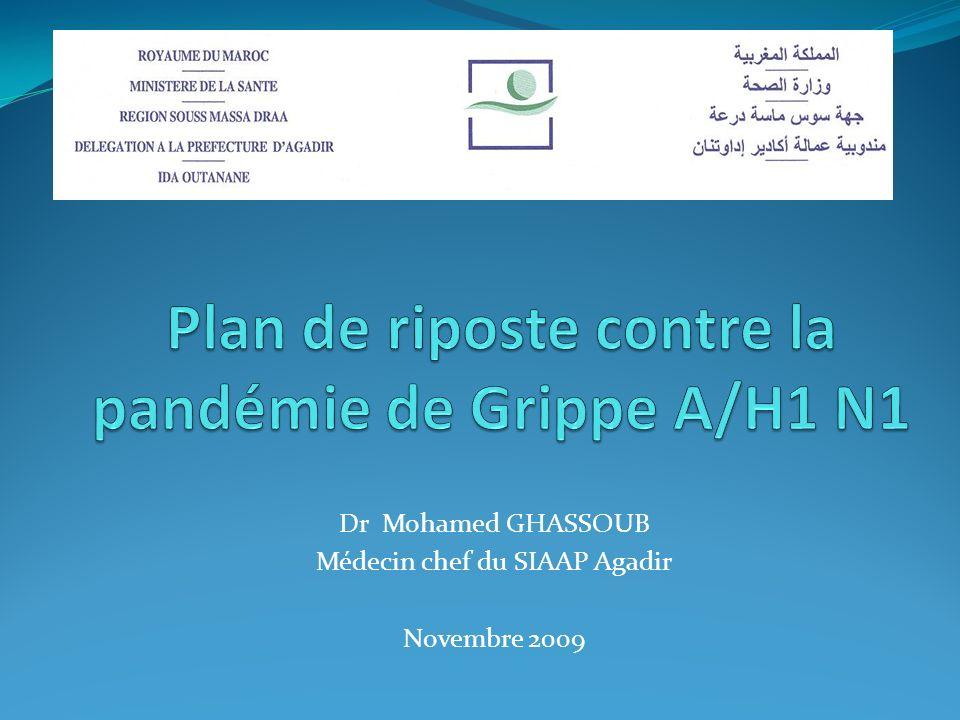 Plan de riposte contre la pandémie de Grippe A/H1 N1